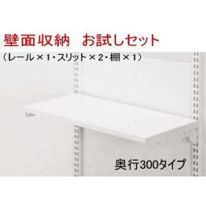 【お試しお買い得】 収納システム W450×H700|nakasa
