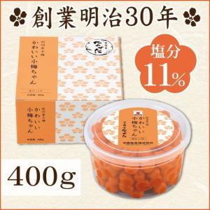 梅干し 小梅 かわいい小梅ちゃん 400g 中田食品 梅干 田舎漬 塩分11% 紀州 和歌山 nakatafoods