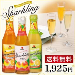 3種類の味が一度に楽しめる!  和歌山県産の3つのフルーツ(梅・きよみオレンジ・ゆず)を使ったスパー...