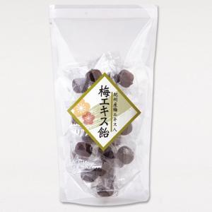 梅エキス飴 100g 中田食品 梅エキス入り 酸味と甘さが調和 携帯|nakatafoods