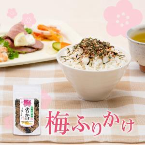 梅ふりかけ 100g ファスナー付袋 中田食品 おにぎり 梅 大豆 胡麻 海苔|nakatafoods