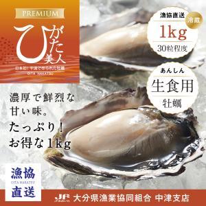 生牡蠣(カキ/かき)ブランド牡蠣(ひがた美人)30粒「漁協直送」|nakatsuhigata