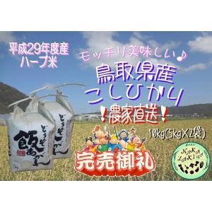 【低温熟成】平成29年度産 鳥取県産 ハーブ米 コシヒカリ ...