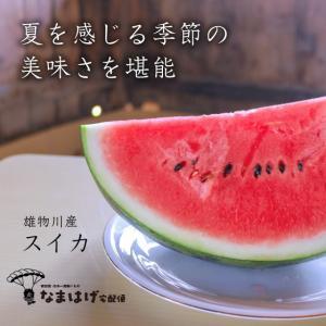 秋田県雄物川町産スイカ あきた夏丸|namahage-takuhaibin