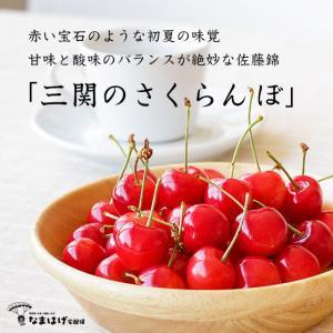 秋田県湯沢市三関産 佐藤錦さくらんぼ|namahage-takuhaibin