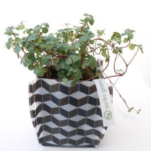 プランターカバー ガーデニング 園芸グッズ uchi-green 組み木|namustore