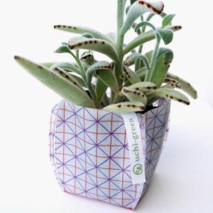ガーデニング用鉢カバー 園芸用雑貨 uchi-green 格子|namustore