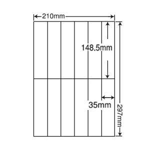 C12iF (L) 再剥離 ラベルシール 1袋 100シート A4 12面 148.5×35mm マルチタイプ 管理・表示ラベル 東洋印刷 ナナコピー C12iF nana