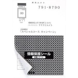 PPE-4(L) 個人情報保護シール 貼り直し可能 目隠しラベル はがき半面タイプ 100枚 地紋印刷入り目隠しシール 簡易タイプ 93×75mm|nana
