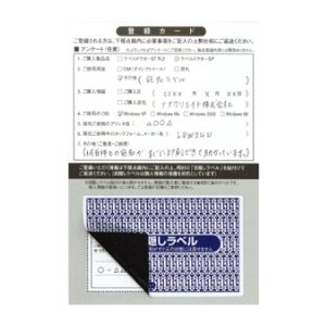 PPI-3(VP5) 個人情報保護シール 5ケースセット 5000枚 84×53mm 貼り直し不可 目隠しラベル 必要箇所目隠しタイプ セキュリティタイプ ナナラベル PPI3|nana