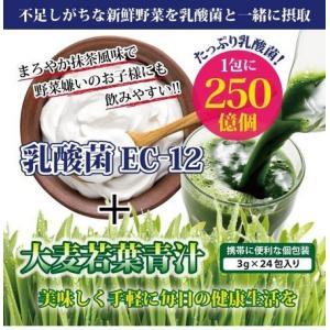 パッケージサイズ:約 W12xH14.5xD6.3cm 内容量:72g(3gx24包) ■原材料:ぶ...