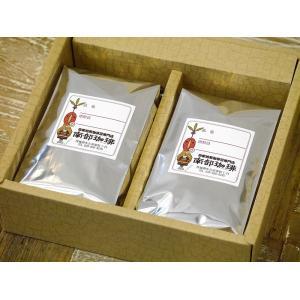 B2-1 自家焙煎珈琲豆2種ギフトセット(ブラジルサントス、南部珈琲ブレンド) nanbucoffee