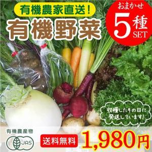 旬のこだわり有機野菜おまかせ5種セット!送料無料! お試し 有機農家直送 産地直送 新鮮 宮崎県綾町産