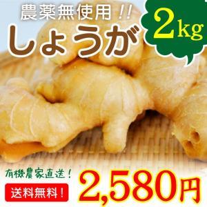 宮崎県綾町で化学肥料・農薬を使用しない安心して食べられる美味しい有機野菜を作っています。 南国宮崎で...