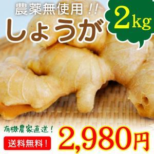 宮崎県綾町産 農薬無使用 生姜 しょうが 2kg 送料無料
