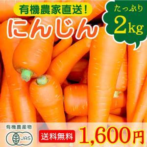 有機野菜 宮崎県綾町産 農薬無使用 にんじん 2kg 送料無料