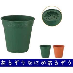 ロゼアポット300型 グリーンの関連商品9