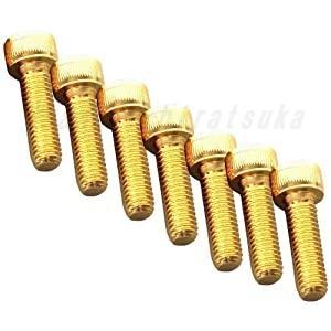 C.F.POSH 24Kメッキステンレスパルサーカバーネジセット ZRX1100 ZRX1200DAEG 487800 CFポッシュ nankai-hiratsuka