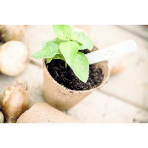 Skycabin 花盆 ジフィーポット ?形 6cm 100片装 泥炭ポット植物苗スターターカップ保育園ハーブ種子生分解性ポットと|nano1