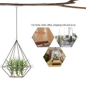 Salinr アイアン プラントハンガー エアプランツ ハンギング 吊るす 植物ホルダー 観葉植物 プランターハンガー ハンギングプランター|nano1