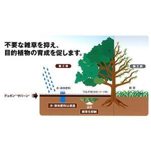 防草デュポン(TM)ザバーン(R) 防草シート〈240BB〉強力タイプ 幅(約)1m×長さ(約)10m|nano1