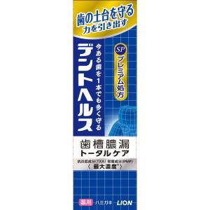デントヘルス薬用ハミガキSP 90g|nanohanadrg
