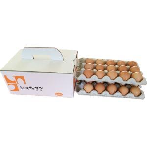 玉子かけご飯にお勧め 菜の花たまご アスタキサンチン卵赤玉30個|nanohanaegg-kokko