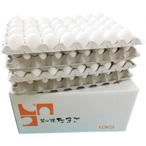 業務用送料込み 菜の花たまごアスタキサンチン卵 白玉LM10kg|nanohanaegg-kokko