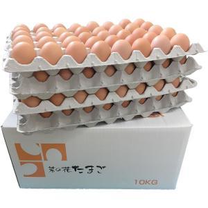 業務用送料込み 菜の花たまご アスタキサンチン卵赤玉LM10kg|nanohanaegg-kokko
