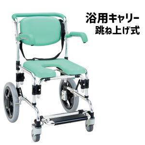 浴用キャリー  入浴用車椅子 シャワーチェア 肘掛け跳ね上げ式 らくらく浴用キャリー  YC-70GR|nanohanakaigo