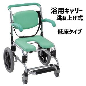 浴用キャリー  低床 入浴用車椅子 シャワーチェア 肘掛け跳ね上げ式 らくらく浴用キャリー YC-746GR|nanohanakaigo