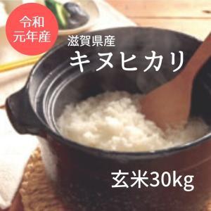 滋賀県産 近江米 キヌヒカリ 令和元年 玄米30Kg