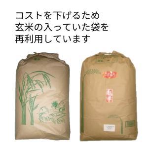 滋賀県産 近江米 キヌヒカリ 令和元年 玄米30Kg|nantan-smile|03