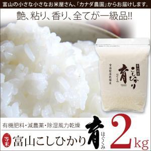 こしひかり コシヒカリ 富山県産 2kg 普通米 無洗米 育 はぐくみ 29年度産 メーカー直送品 なんとのほんまもん|nanto