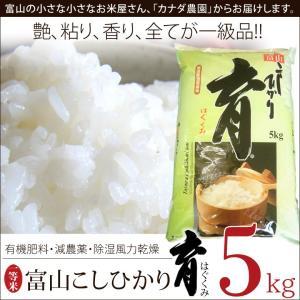 新米 こしひかり コシヒカリ 富山県産 5kg 普通米 無洗米 育 はぐくみ  メーカー直送品 なんとのほんまもん|nanto