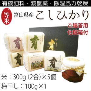 新米 こしひかり コシヒカリ 富山県産 ギフトセット 詰め合わせ 300g(2合)×5個入 梅干し100g×1 なんとのほんまもん|nanto