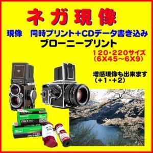 ネガフィルム ネガ現像  ブローニー 同時プリント+CDデータ書き込み  1本から受付