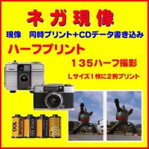 ネガフィルム ネガ現像  同時プリント OLYMPUS RIKOH  135ハーフ フィルム  1本から受付