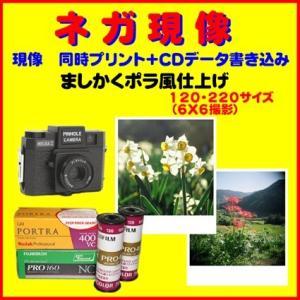 ネガフィルム ブローニー ネガ現像 同時 ましかくポラ風プリント FUJI   Kodak1本から受付
