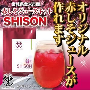 《送料無料》 SHISON赤しそジュースキット(500ml原液用)宮城県登米市産