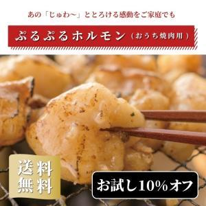 ホルモン 送料無料 国産 焼肉  シマチョウ バーベキュー  お中元 ギフト ぷるぷるホルモン(おうち焼肉用)400g(2人前×2袋) natsume-horumon
