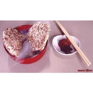 無添加 昔ながらの 懐かし ポンセンベイ +玄米・6|natukashiya-honp
