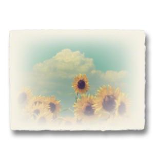 おしゃれな和紙のインテリアアートパネル「入道雲と顔を出したヒマワリの花」(18x24cm)|natum