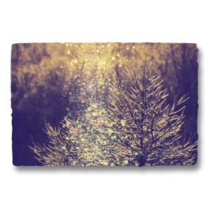 おしゃれな和紙のインテリアアートパネル「ダイヤモンドダストと朝日に輝く凍ったカラマツの枝」(18x27cm)|natum