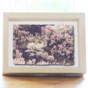 手漉き和紙の立体アートフレーム「春の花木に囲まれた桜」(20x15cm)|natum