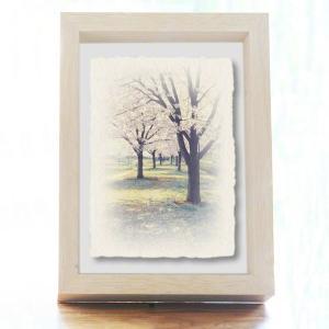 手漉き和紙の立体アートフレーム「川沿いの桜並木と落ちた花びら」(20x15cm)|natum