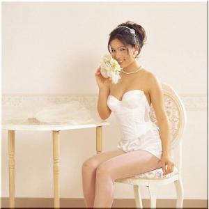 シルク ビスチェ【背中が大きく空いたドレス用】|natural-bijin