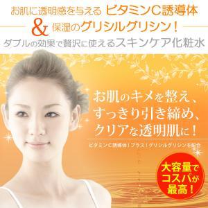 化粧水 ビタミンC誘導体化粧水 500ml 自然化粧品研究所 (メール便不可)|naturalcosmetic|02