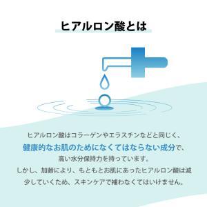 ヒアルロン酸原液 10ml  ポスト投函可   美容液 スキンケア 保湿|naturalcosmetic|05