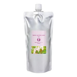 原液100% 月桃ウォーター (月桃水) 500ml 自然化粧品研究所 (ハーブウォーター 沖縄 アルピニア)|naturalcosmetic